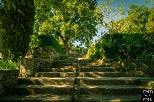 Photographe tourisme toulouse : Bruniquel